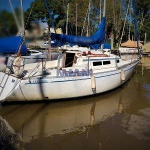 velero Roy 26